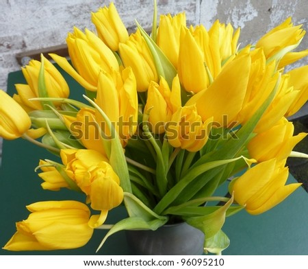 a bouquet yellow tulips on a vase
