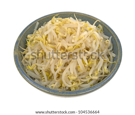 A bowl full of fresh bean sprouts on a white background.