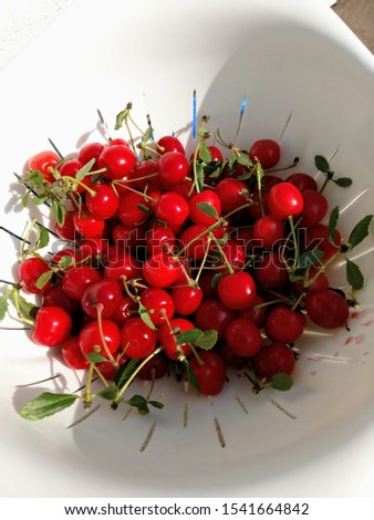 a bowl of freshly picked cherries #1541664842