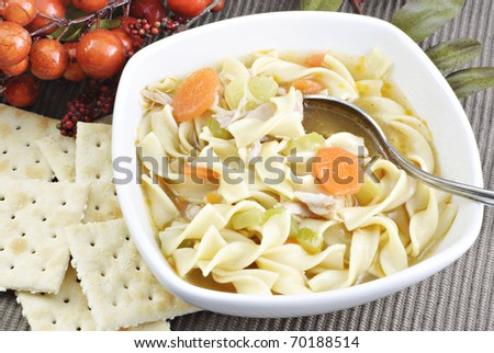 A bowl of hot homemade chicken noodle soup with crackers, horizontal with copy space