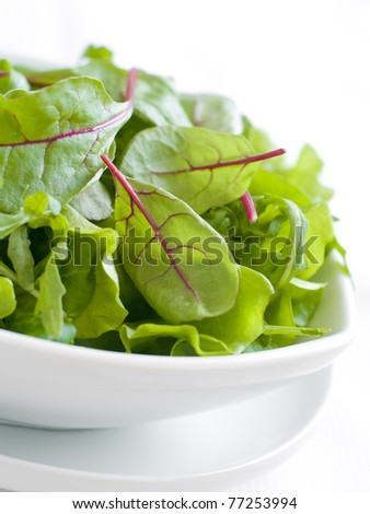 A bowl of mixed lettuce. Shallow depth of field, selective focus