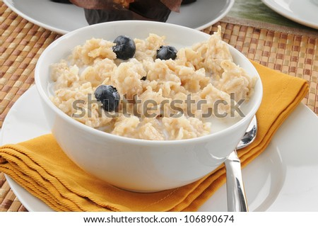 A bowl of oatmeal with blueberries closeup