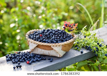 A bowl with fresh bilberry (Vaccinium myrtillus) set on an old wooden bench. Fresh and luscious bilberry. Stockfoto ©