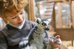 a boy and a lemur at the zoo, a boy and his favorite pet lemur