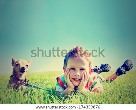 a boy and a tiny chihuahua in...