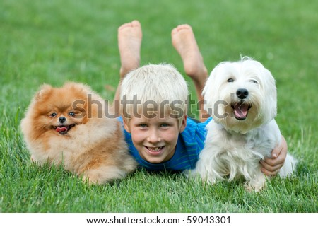 A boy and his pets are lying on the green grass - stock photo