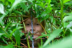 A boy face hiding behind green leafs