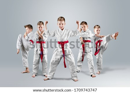 A boy in a kimono in different karate poses on a light background. The concept of karate lesson, a circle for the child, sports education, character Foto stock ©