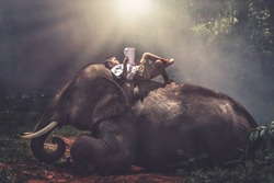 A boy in a school uniform sleeping and reading a book on the back of an elephant at the jungle