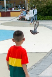 A boy in T-shirt with red yellow green color chasing a flying pigeon.