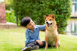 A boy is sitting with a dog by the pool. Asian boy hugging Shiba Inu in a park.