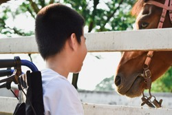 A boy is smiling on a wheelchair. He sitting in the ranch. In the white fence there is a brown horse. Happy disabled child concept.