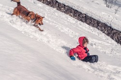 A boy with a dog ride from a snow slide on a pan sledge. Winter activities. Downhill skiing. Friendship of a boy and a dog. Pets. Sledging. The dog runs after the child on the sled