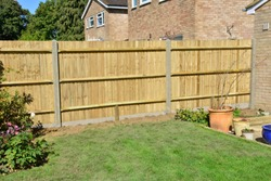 A brand new garden fence in the UK in Sept.