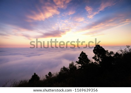A breathtaking landscape in Taiwan. This was taken on top of a mountain. The clouds formation is vast and dramatic. The sun rises above the thick clouds. The image is calm, peaceful and magnificent. #1169639356