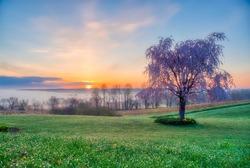 A breathtaking sunset landscape over a grassy field in Venango, Pennsylvania