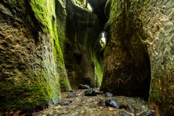 A breathtaking view of the Sombrio Canyon near Port Renfrew, Vancouver Island, BC Canada