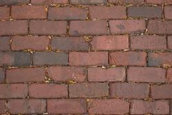 A brick  street. Downers Grove, Illinois, USA.