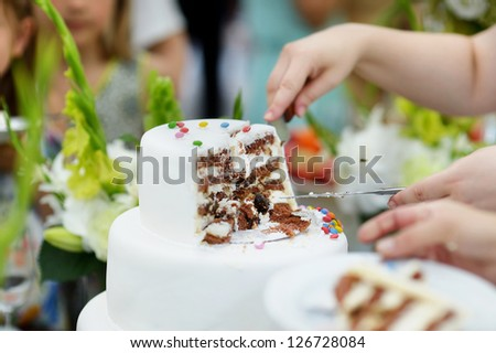 A bride and a groom are cutting their wedding cake