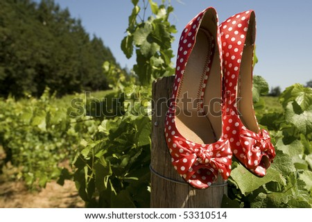A bride's high heels with polka-dots hanging from a pole in a vineyard