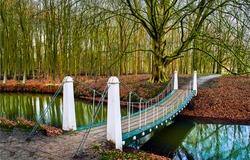 A bridge across the river in the autumn park. River bridge in autumn park. Autumn park bridge over river creek