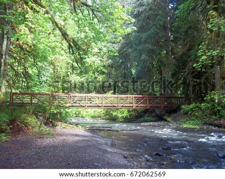 A bridge in the woods #672062569