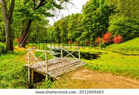 A bridge over the autumn river covered with duckweed. Autumn park river bridge. Birch bridge in autumn park river