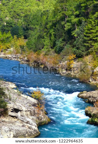 A bright blue winding river with small white rapids surrounded by large stones and tall green and yellow trees. Taken at Koprulu Canyon in Antalya, Turkey. #1222964635
