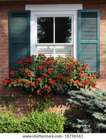A bright shuttered window with a flower box overflowing with red flowers. Taken on a sunny day.