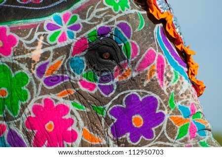 Painted Elephants Photography a Brightly Painted Elephant at