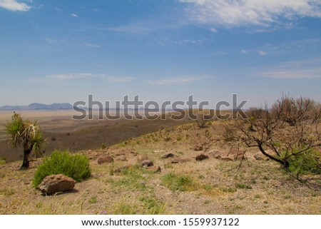 a broad vista of scrub desert plants with mountains miles in the distance #1559937122