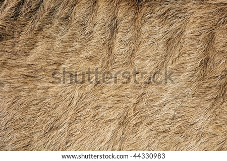 A brown background with a hairy texture