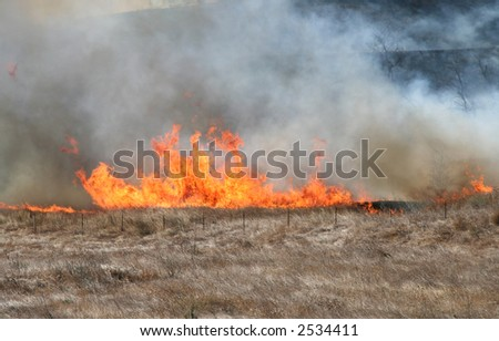 A brush fire moves up a hill