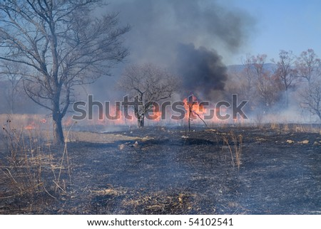 A brushfire at woodside. Early spring.