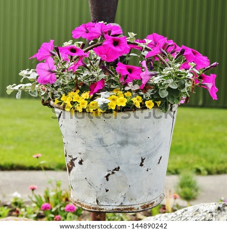 A Bucket of Beauty. A vintage white bucket as a flower container adds a touch of the country to the garden.