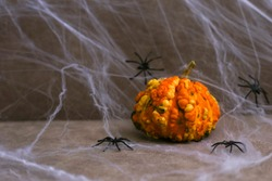 A bumpy pumpkin next to black spiders on white web background. Place for text. Halloween greetings card