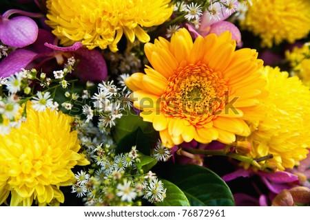 A bunch of chrysanthemum flower