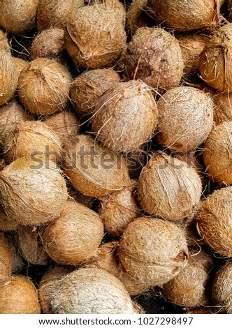 A bunch of coconuts stacked together