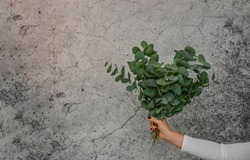 A bunch of Eucalyptus in heart shape hold by a woman's hand front of a cement wall