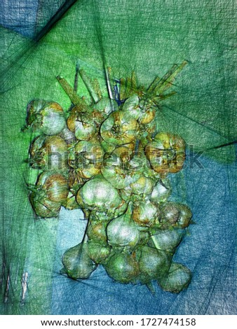 A bunch of garlic hanging on the kitchen wall n oil painting in the style of abstract lines