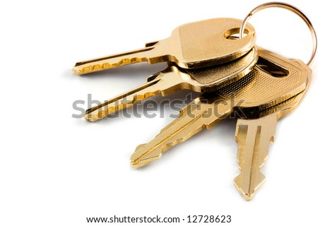 A bunch of keys isolated against a clean white background