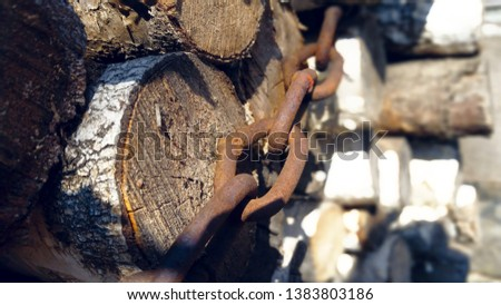 a bunch of logs piled up in a pile and tied with a rusty iron chain.