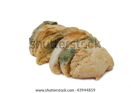 a bunch of molded bread