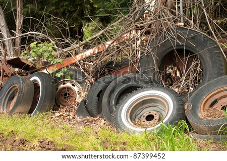 A Bunch of Old Tires Dumped Amongst Some Trees and Vines