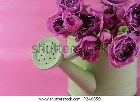 A bunch of pink roses in a grees pail
