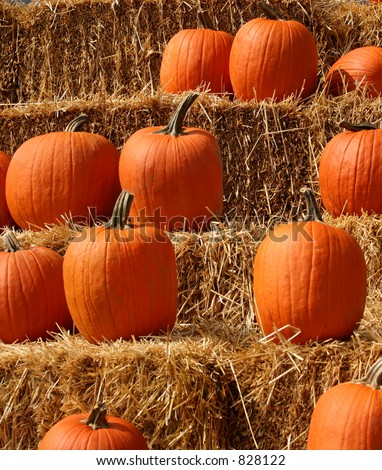 A bunch of pumpkins displayed on a stack of bales of straw. The focus is on the upper bales and pumpkins, with the lower row being slightly out of focus.