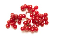 a bunch of red berries isolated on white background