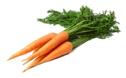 A bunch of ripe carrots with leaves isolated on white background.