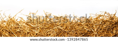 a bunch of straw as border, isolated with white background Foto stock ©