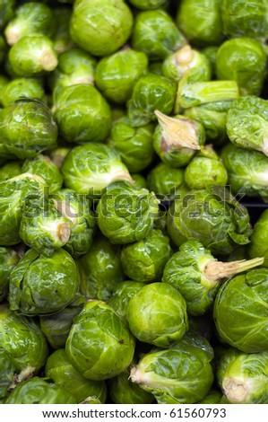 A bunch of wet fresh burssle sprouts at the supermarket